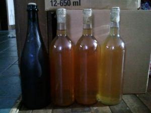 Maple Hard Cider